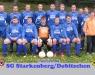 fussball1_2009